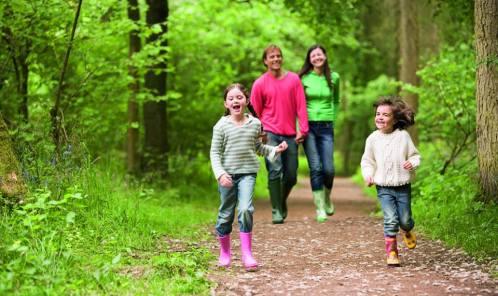 Düzenli Egzersizlerin Sağlığa Faydaları