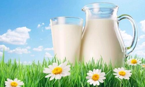 Sütün Faydaları – Süt ve Kalsiyum