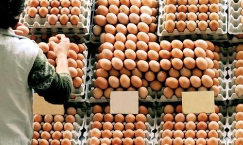 Yumurta Alırken Dikkat Edilecekler