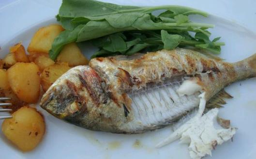 Balık Tüketimi ve Kanser