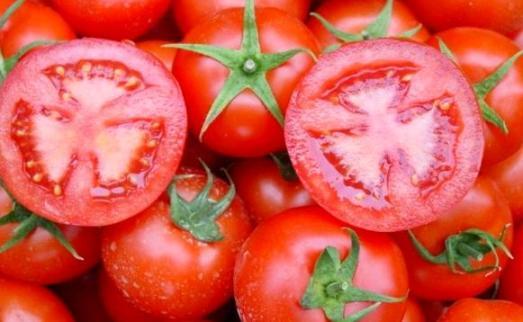 Genetiği Değiştirilmiş Gıdaların Zararları