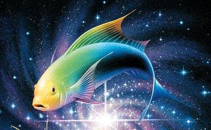 balık-burcu-egitim-2016