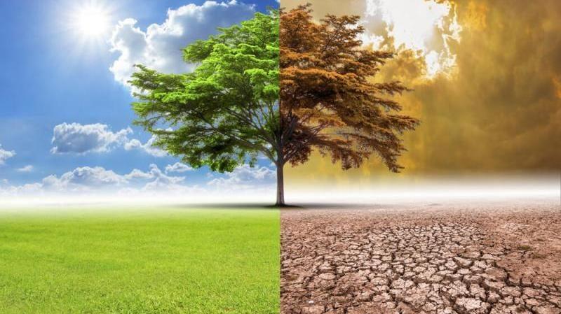 İklim değişikliği nedeniyle doğal afetlerin sayısı artıyor
