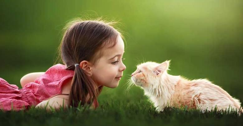 Hayvan sevgisi iş dünyasını da sardı