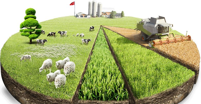 Tarımsal üretim miktarı ve kalitesini artırmak