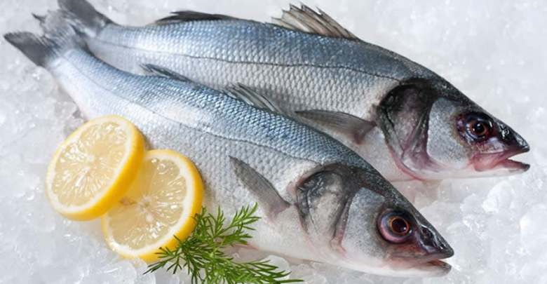 Laboratuvar işi sentetik balık yer miydiniz?