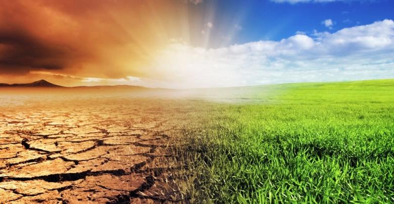 BBC, beş kritik maddede 2020'nin iklim değişikliğini yorumladı